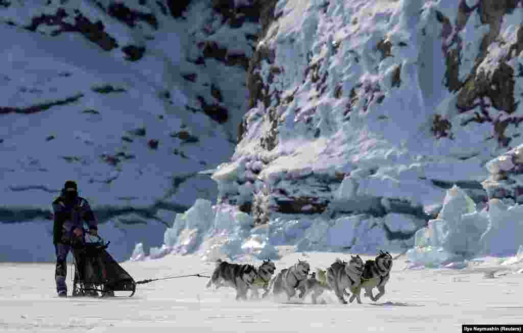 A musher is pulled by a team of Siberian huskies during a practice session on the frozen Biryusa River in the Siberian Taiga area outside Krasnoyarsk, Russia. (Reuters/Ilya Naymushin)