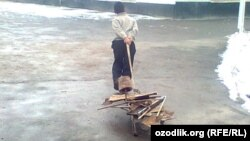 Uzbekistan - school boy is pushing scrap-metal to the school in Samarkand region