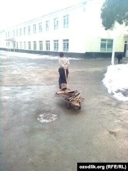 Өзбекстанның Самарқанд облысында мектепке металл сынықтарын апара жатқан бала.