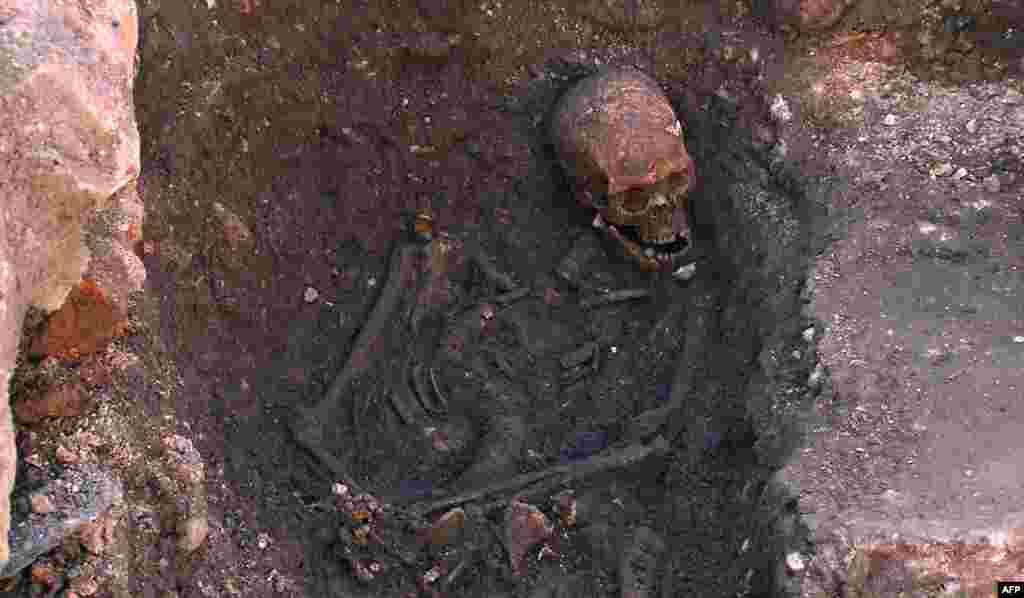 A photo distributed by the University of Leicester shows the 500-year-old skeleton unearthed at the Grey Friars Church excavation site in Leicester, in England's Midlands.