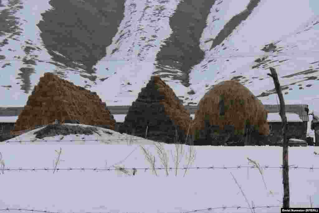 Катта-Талдык айылы