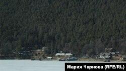 Лес на берегу Байкала