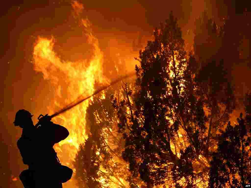 Пожары в Калифорнии не удается взять под контроль