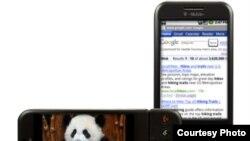 نمایی از تلفن همراه گوگل که با نام «جی فون» به بازار عرضه شده است.