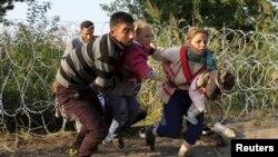 Сербиядан Венгрияга өтүп жаткан мигранттар. 27-август, 2015-жыл