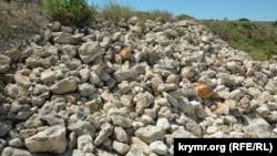 В этом месте видна попытка укрепления обрушающегося берега камнями