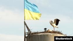 Украина туусу.