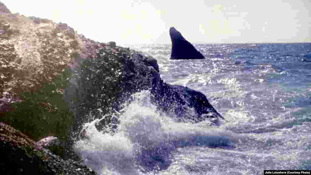 На заднем плане видна скала в форме плавника, которая называется «Акулий плавник». Это один из самых узнаваемых объектов мыса. Скала дала название пляжу рядом с ней