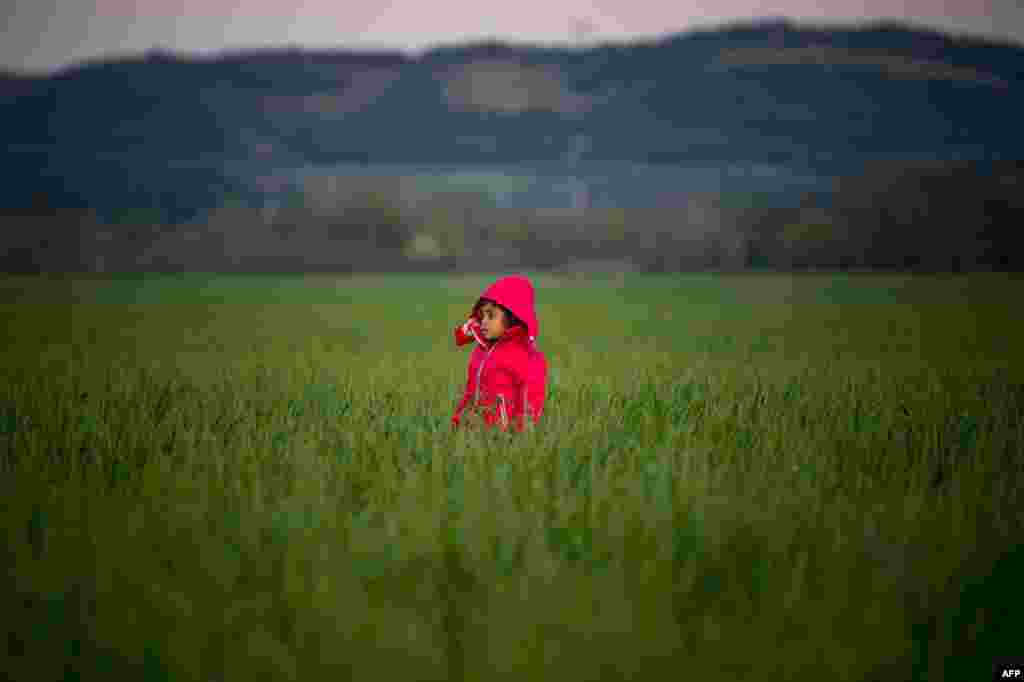 A child stands in a field at a makeshift camp near the village of Idomeni at the Greek-Macedonian border where thousands of migrants and refugees are stranded. (AFP/Andrej Isakovic)