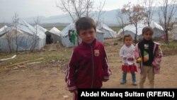 Refugjatët në malin Sinjar, Irak