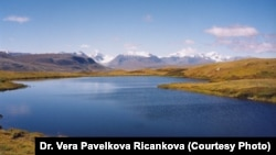 The unusual topography of the Altai-Sayan region on the Russian-Mongolian border has helped turn the area into a sanctuary for several ancient species of mammals.