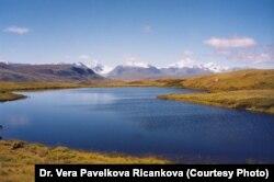 Алтай-Саянский регион. Фото Веры Павелковой-Ричанковой.