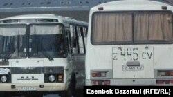 Kazakhstan's 'Carousel Voting'