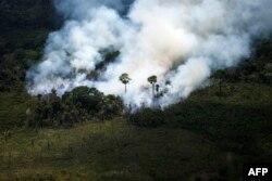 Zjarret në Amazonë.