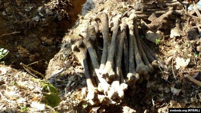 Косьці ў раскопах (архіўнае фота)