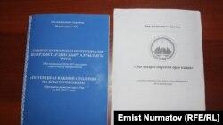 Мэрдин 2014-жылдагы жана 2016-жылдагы программасы.