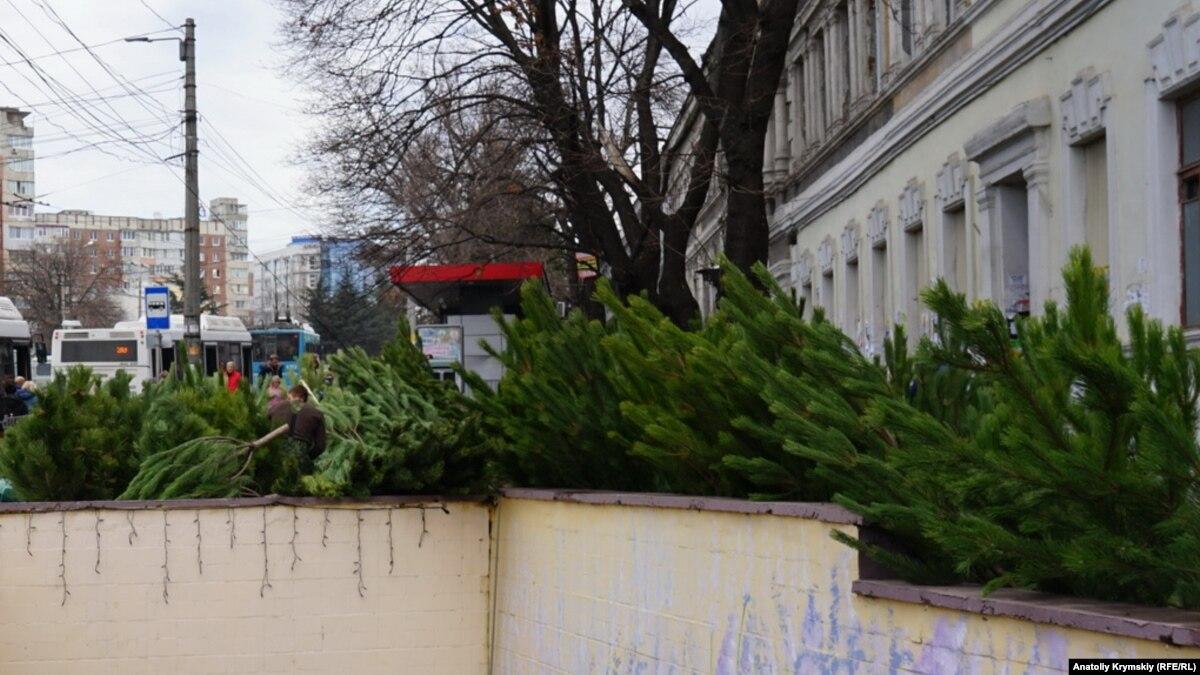 В Киеве заработали 15 пунктов приема новогодних елок