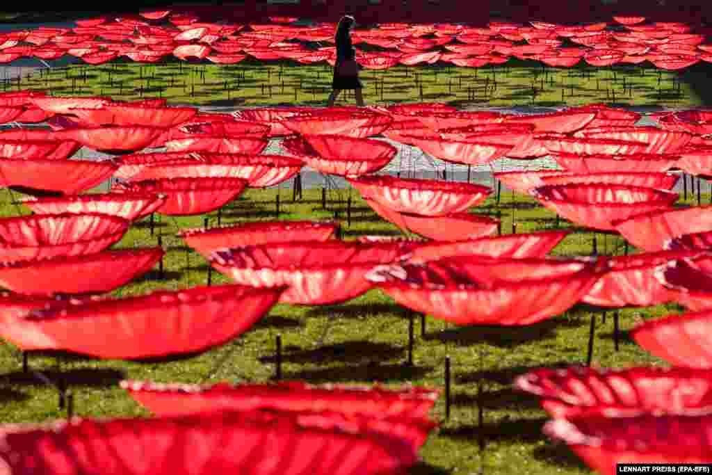 A woman walks past an art installation of 3,200 giant poppy flowers made of artificial silk to commemorate the end of World War I on Koenigsplatz Square in Munich, Germany. (epa-EFE/Lennart Preiss)