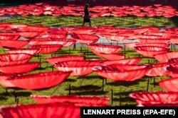 3200 гигантских алых маков – инсталляция, установленная в центре Берлина в память о жертвах Первой мировой войны