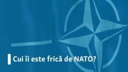 """Trupele de reacție rapidă ale NATO """"la 360 de grade"""""""