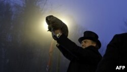 Groundhog handler John Griffiths holds Punxsutawney Phil after he saw his shadow, predicting six more weeks of winter during the 128th annual Groundhog Day festivities in Punxsutawney, Pennsylvania, on February 2.