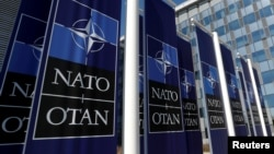 Баннеры с логотипом НАТО