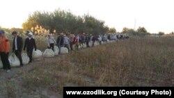 Сбор хлопка в Хорезмской области Узбекистана, ноябрь 2014 года.