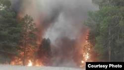 Лесной пожар в Восточно-Казахстанской области. 22 мая 2018 года.