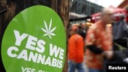 Легализация марихуаны - повод для общественной дискуссии во многих странах