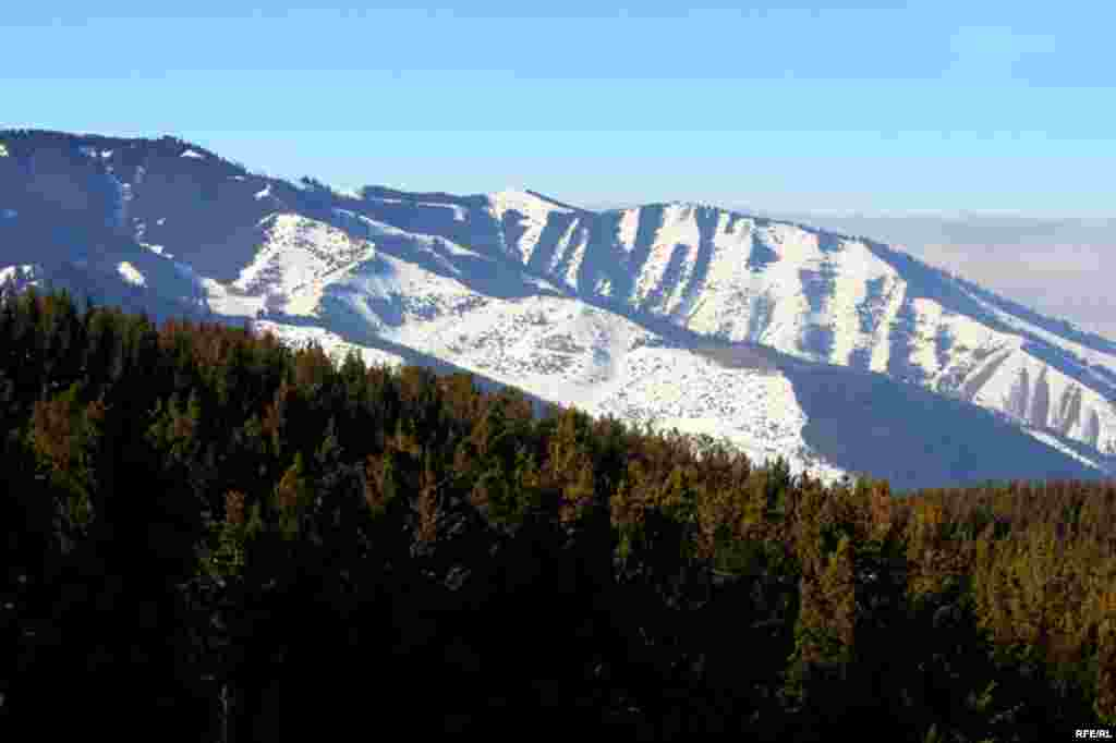 Лучше гор может быть только отдых в горах #19