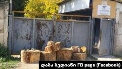 Сотрудники клиники перекрыли ворота деревянными пнями. Не помогли ни полиция, ни местные чиновники, прибывшие на место
