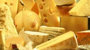 Švicarski sir u Foči