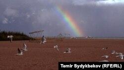 Берег озера Иссык-Куль. Архивное фото.