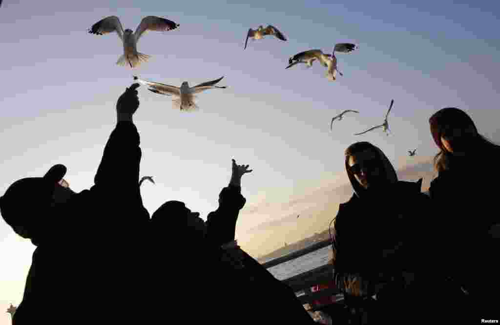 Passengers feed seagulls as they travel on a ferry on the Bosphorus in Istanbul. (Reuters/Murad Sezer)