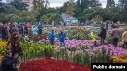 Никитский ботанический сад. 23 ноября 2016 года