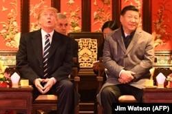 Дональд Трамп и Си Цзиньпин на встрече в Пекине. Ноябрь 2017 года