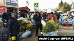Для многих жителей Абхазии продажа цветов мимозы – неплохой способ заработать
