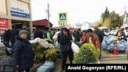 Экспортеры обычно закупают мимозу у крестьян по 20-40 рублей за килограмм. Если мимозу не оформить по правилам, ее могут отправить обратно в Абхазию
