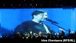 Юрий Шевчук на концерте группы ДДТ, ноябрь 2011 г