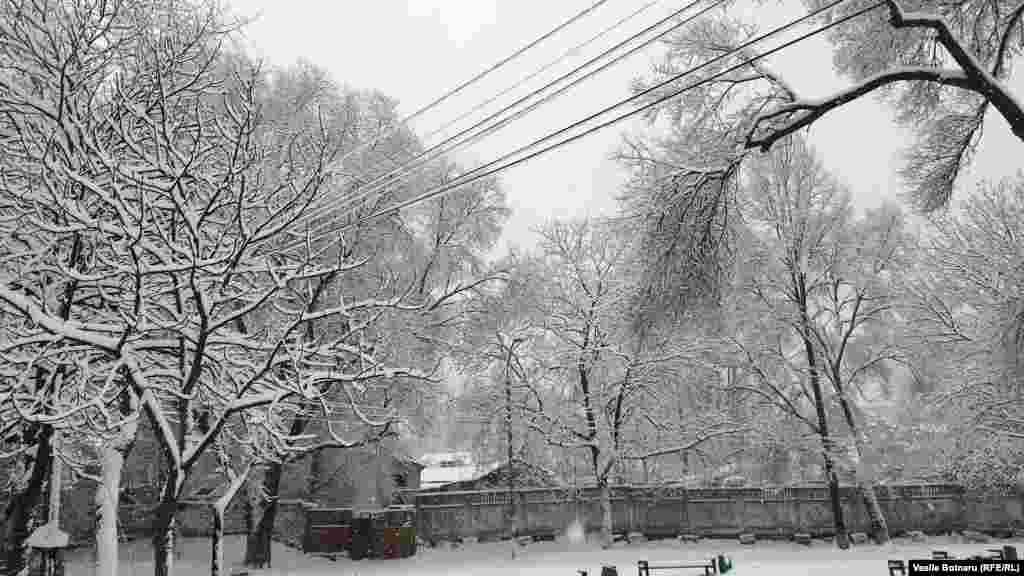 Iarna pe uliță... la Chișinău