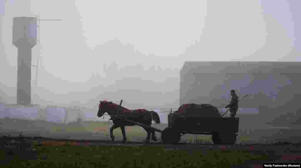 A man rides in a horse-drawn carriage on a foggy autumn day near the village of Krutilavichy, Belarus. (Reuters/Vasily Fedosenko)