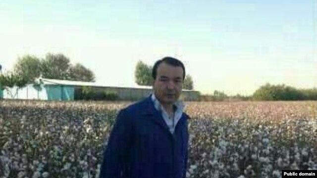 Uzbekistan - Cotton, Ozodbekning rasmi, 2013, WhatsApp