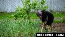 Chechnya --Woman in the garden, 2016