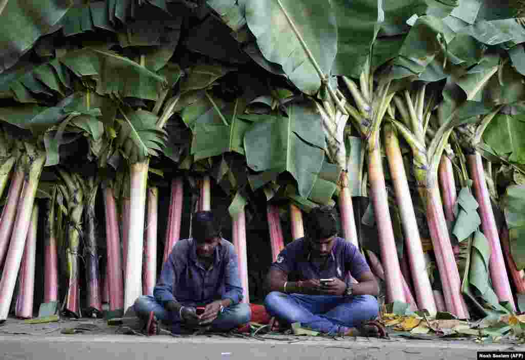 Vendors look at their mobile phones at a market for banana leaves in Hyderabad, India. People decorate the entrances of their homes and businesses with banana leaves during Diwali, the Hindu festival of lights. (AFP/Noah Seelam)