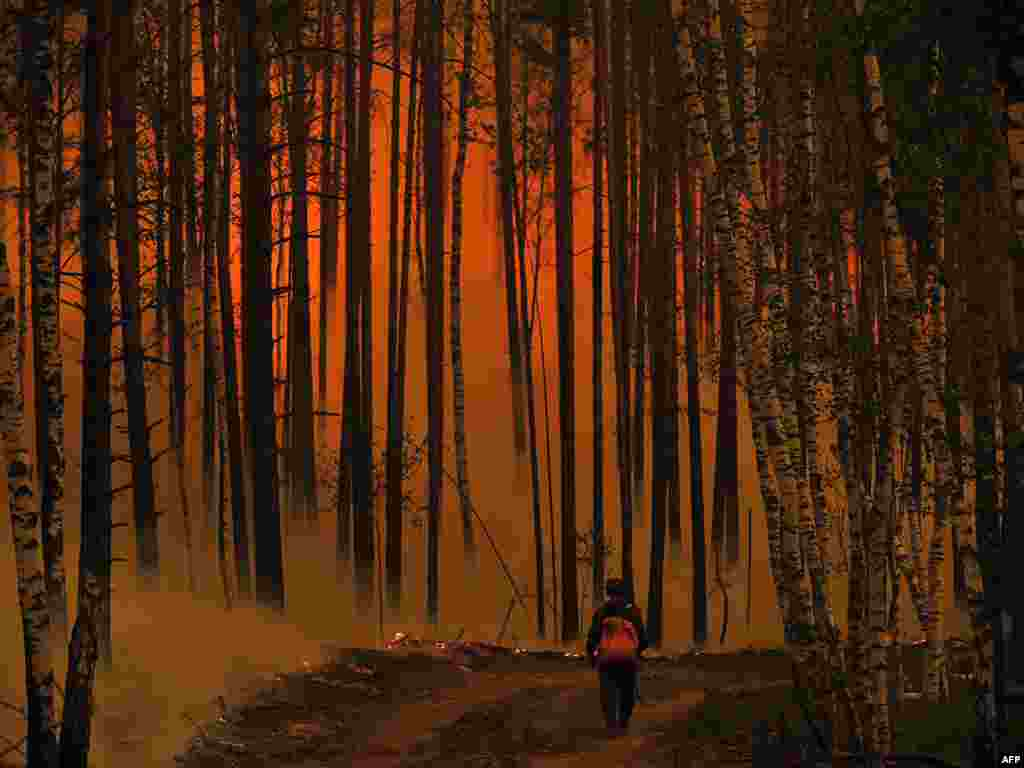 A man walks in a forest near the village of Golovanovo, in the Ryazan region, on August 5. President Dmitry Medvedev sacked top military officers for negligence in the catastrophe, the worst wildfires in Russia's modern history. Photo by Natalia Kolesnikova for AFP