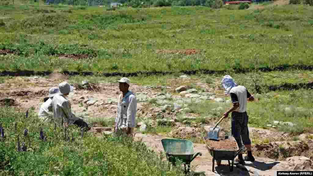 Талхиз қаласы орнында археологиялық қазба жұмыстарын жүргізіп жүрген адамдар. Алматы облысы, 20 маусым 2009 жыл.