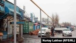 Газопровод вдоль автотрассы в Алматинской области. 13 ноября 2015 года.