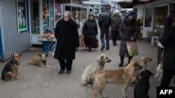 Люди на одном из рынков Донецка. Ноябрь 2014 года