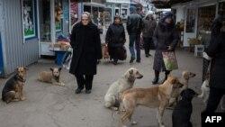 Люди на ринку у Донецьку. Листопад 2014 року. Ілюстраційне фото