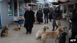Донецк. Ноябрь 2014 года